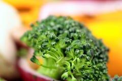 Fim orgânico saudável do delicado da salada acima Imagem de Stock