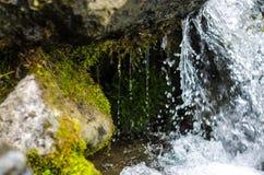 Fim pequeno do córrego da montanha da cachoeira acima foto de stock