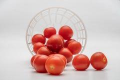 Fim pequeno do tomate de cereja acima imagens de stock