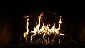 Fim satisfying do movimento lento da atmosfera bonita impressionante confortável acima do tiro da chama de madeira do fogo que qu filme