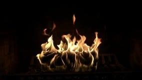 Fim satisfying do movimento lento da atmosfera confortável magnífica bonita acima do tiro da chama de madeira do fogo que queima- video estoque