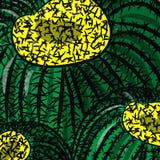 Fim sem emenda da pera espinhosa do fundo do vetor do teste padrão da textura da planta dos cactos do cacto acima Fotografia de Stock