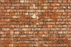 Fim velho da textura do fundo da parede de tijolo vermelho acima a parede bricked textured o teste padrão para o replicate contín imagens de stock