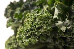 Fim verde orgânico da couve acima Imagem de Stock Royalty Free