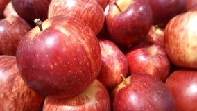 Fim vermelho do fruto das maçãs acima Fotos de Stock Royalty Free