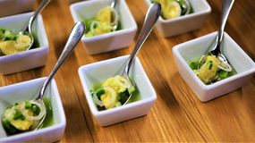 Fin äta middag aptitretareutmärkelse som segrar kocken royaltyfri foto