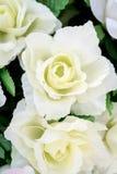 Fin artificielle de fleur de rose de blanc sur le fond brouillé Photo stock