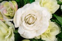 Fin artificielle de fleur de rose de blanc sur le fond brouillé Photographie stock libre de droits
