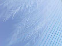 Fin bleue de clavette vers le haut photographie stock