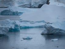 Fin bleue de vêlage d'iceberg  Photographie stock libre de droits