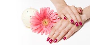 fin blommamanicure för stearinljus royaltyfri fotografi