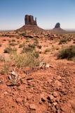 Fin célèbre de vallée de monument, l'Utah, Etats-Unis Image libre de droits