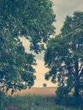 Fin d'été dans le style de vintage Photos libres de droits