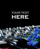 Fin d'instrument de clavier et de cannelure de piano avec l'endroit pour votre texte photo libre de droits