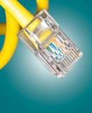 Fin de câble LAN Photo stock