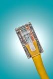 Fin de câble LAN Images libres de droits