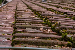 Fin de Clay Roof Shingles European German Moss Dirty Old Shed Top Photos libres de droits
