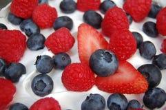 Fin de dessert de bagatelle  Image stock