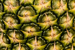 Fin de fruit d'ananas Photographie stock