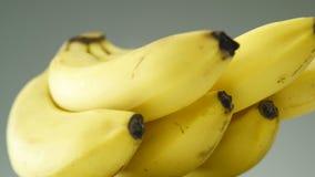 Fin de fruit de banane  banque de vidéos