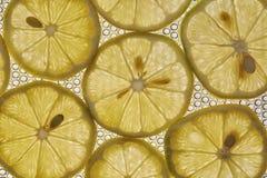 Fin de fruit de citron comme fond Images libres de droits