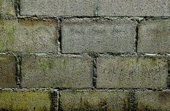 Fin de modèle de blocs de béton pour le fond Images stock