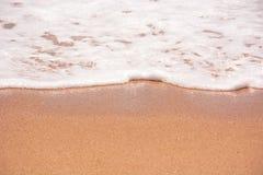 Fin de mousse de mer  Photos stock