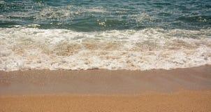 Fin de mousse de mer  Photos libres de droits