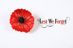 A fin de olvidemos, Flandes roja Poppy Lapel Pin Badge en blanco Fotos de archivo libres de regalías