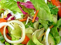 Fin de salade mixte vers le haut Image libre de droits