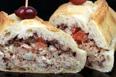 Fin de sandwich à thon vers le haut Photographie stock libre de droits