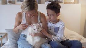 Fin de semana feliz - mamá joven con los niños felices que juegan en el gato blanco de la cama y del jengibre que miente en la ca almacen de video
