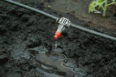 Fin de système d'irrigation vers le haut Photos libres de droits