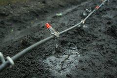 Fin de système d'irrigation vers le haut photo libre de droits