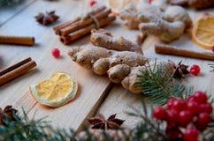 Fin en poudre de gingembre avec les épices traditionnelles brouillées pour l'orange de boulangerie de Noël, anis, cannelle, anis  Images stock
