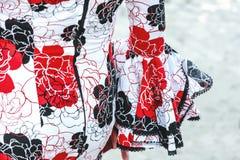 Fin espagnole de robe de flamenco  Images libres de droits