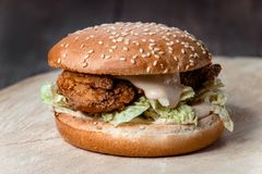 Fin fraîche d'hamburger  photo stock