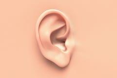 Fin humaine d'oreille vers le haut Image libre de droits