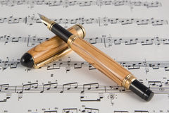 fin instrumentwriting Royaltyfri Bild