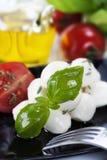 Fin italienne de mozzarella de tomate vers le haut Image stock