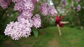 Fin lilas de bourgeon et d'une fille danses et sauts joyeux à l'arrière-plan dans le mouvement lent clips vidéos