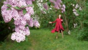 Fin lilas de bourgeon haute et une fille de danse à l'arrière-plan banque de vidéos