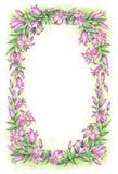 fin liljapink white för tree för bakgrundsteckningsblyertspenna Royaltyfri Foto
