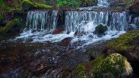 Fin pittoresque de rivière de montagne  clips vidéos