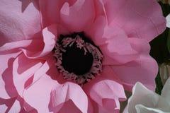 Fin rose artificielle de fleur avec des ombres et des lumières Texture rose de fleur Photographie stock