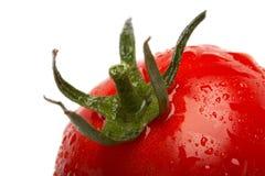 Fin rouge de tomate vers le haut Photos stock