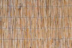 Fin textur Arkivbild