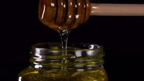Fin vers le haut de l'égoutture savoureuse de miel du plongeur de miel dans un pot banque de vidéos