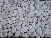 Fin vers le haut de la disposition japonaise de jardin de cailloux blancs photographie stock