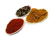 fina kryddor Arkivfoton